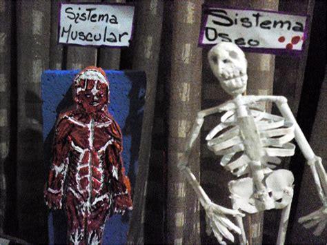 como hacer una maqueta del esqueleto humano manualidades lenis maqueta del sistema oseo esqueleto