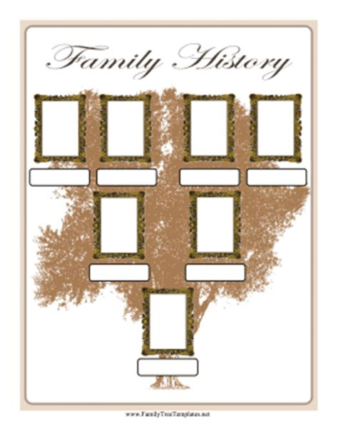 family tree with photo frames template