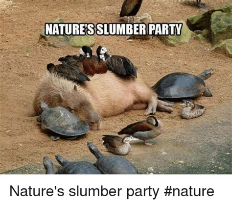 Slumber Party Meme - 25 best memes about slumberparty slumberparty memes