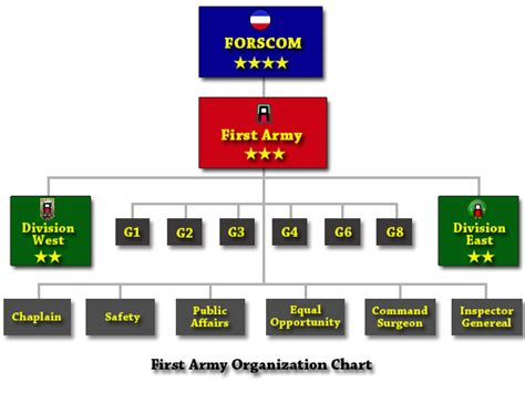 military staff sections army forscom unit structure chart motorcycle review and