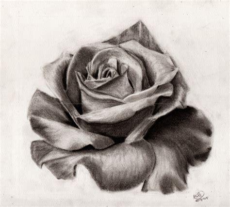 tattoos de rosas dibujos de rosas a lapiz design bild