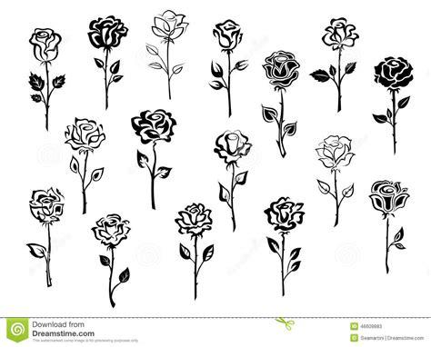 hoontoidly single black rose drawings images