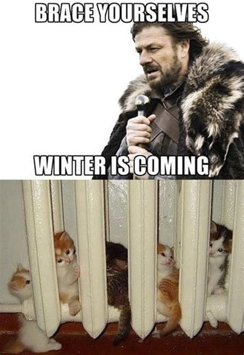 Brace Yourself Meme Snow - brace yourselves