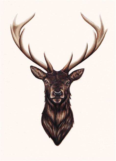 deer head tattoo design stag antlers darkness and stag