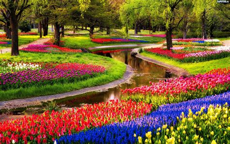 Largest Flower Garden The Keukenhof Park The Largest Botanical Garden Of The