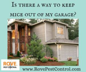 how to keep mice out of your garage archives rove pest