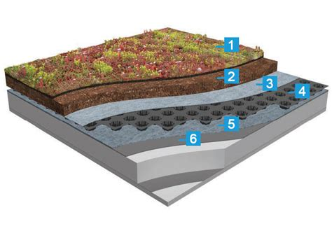 Roof Mats by Icopal St Sedum Mat Extensive Green Roof System