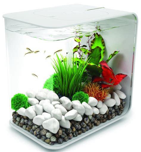 Truck Ikan Aquarium fish aquariums for sale cheap wholesaler doubletail