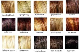 hair color swatches crisace hair2go kit crisace
