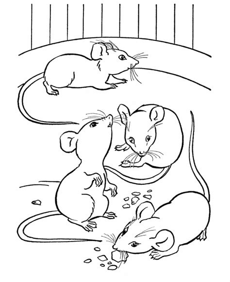 baby mouse coloring page baby mouse coloring page coloring home