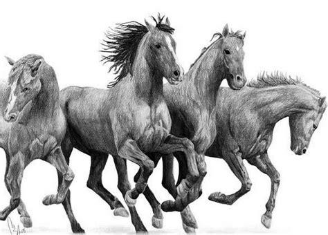 caballo cogida brutal por detras mejores 31 im 225 genes de dibujos de caballos horse