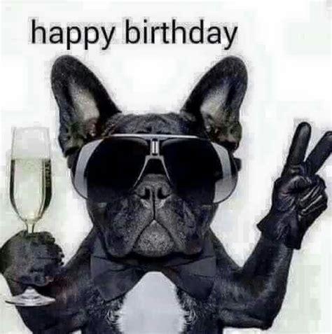 imagenes de happy birthday bro best 25 funny happy birthday pictures ideas on pinterest