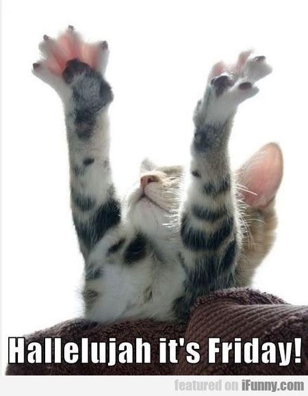 its friday images hallelujah it s friday ifunny