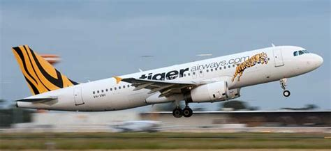 Budget Airline Tiger Airways To Fly To Perth Australia by Tickets Tiger Airways Cheap Flights Utiket