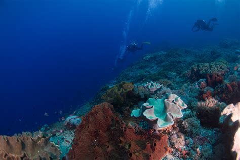 dive travel nusa penida 20180228 dive travel finland oy