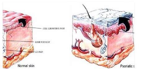 magnesio supremo dosaggio esperimenti acido tartarico carbonato di sodio 03