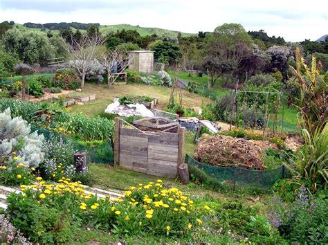 backyard permaculture australia permaculture verslautonomie