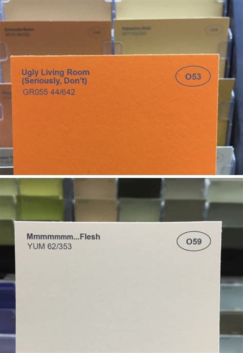 funny colors one guy decided to rename paint colors with hilariously