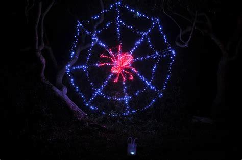 botanical gardens fort bragg ca festival of lights things to do in mendocino county nov 30 dec 9 2012