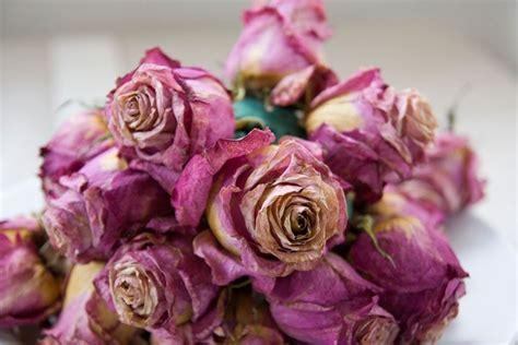 fiori essiccati vendita fiori secchi on line fiori secchi fiori secchi