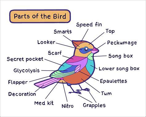 bird parts print topatoco