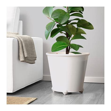 White Plant Containers Ikea Ps Fej 214 Self Watering Plant Pot White 32 Cm Ikea