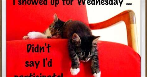 wednesday humor delightful wishes   wonderful day