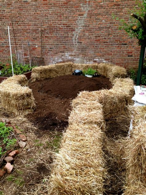 Gardening With Hay Bales Straw Bale Gardening The Biodegradable Alternative To