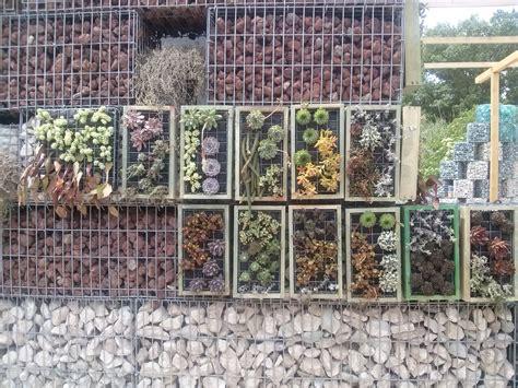 giardini verticali roma vendita moduli giardino verticale tivoli roma giardini
