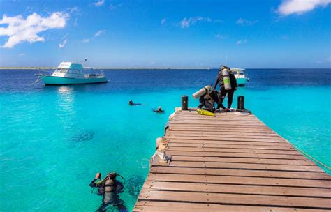 bonaire dive resorts buddy dive resort bonaire tours and vacations
