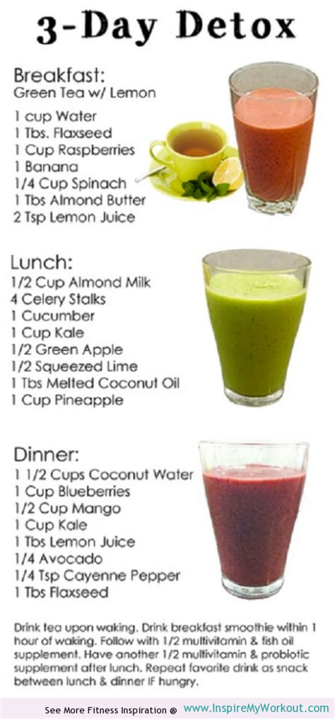 10 Day Detox Breakfast Shake Recipe by 3 Day Detox Diet