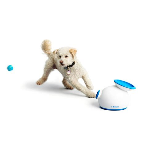fetch toys ifetch interactive fetch small dogs ifetch touch of modern