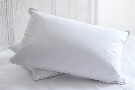 Goose Pillows On Sale by Hungarian Goose And Feather Pillows The Duvet Store