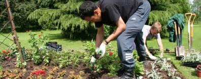landscaping gardening vtam