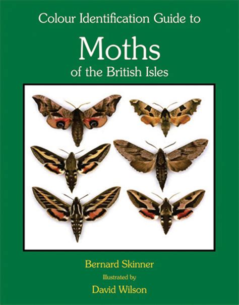 the of the moths books moths of the isles