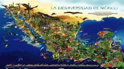 imagenes recursos naturales de mexico recursos naturales en m 233 xico