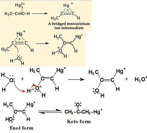 hydration of alkynes chemistry 321 gt srinivasan gt flashcards gt alkynes studyblue