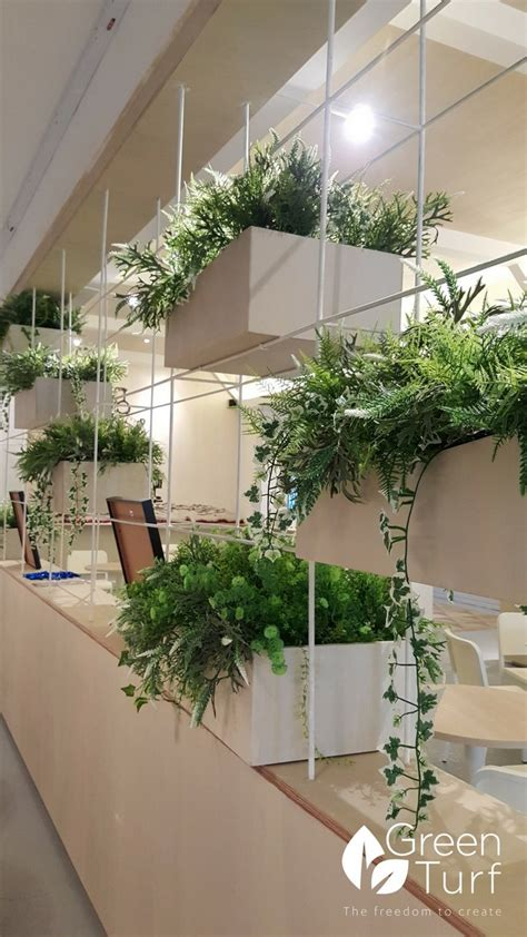 Plants That Don T Need Sunlight artificial green walls in restaurants and cafes