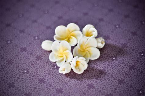 Flower Arrangements Diy fondant frangipani tutorial
