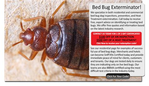 bed bug exterminators rhode island sniffk9s bed bug