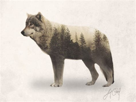 wolf double exposure animal portraits by lunaroveda on