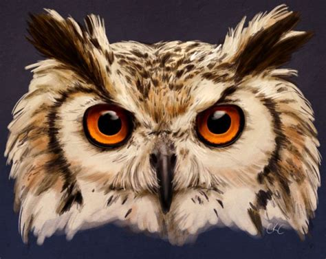 owl painting by inonibird animal references pinterest