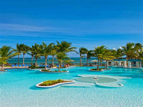 caribbean tropical beaches resorts palm trees trees blue