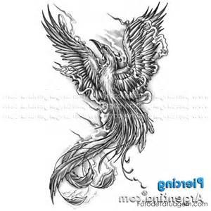 desenhos tatuagem fenix foto tatuagem