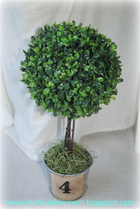 topiary diy thrifty decor diy topiary craftiness tam