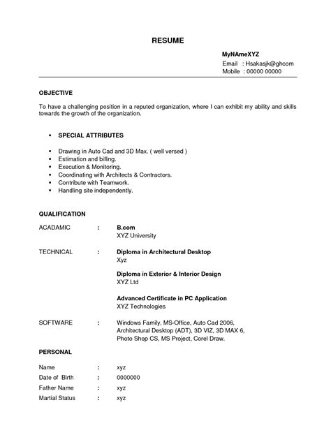 sle resume exles for freshers decorator sle resumes international chef sle resume