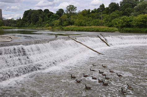 design flood meaning weir wikipedia