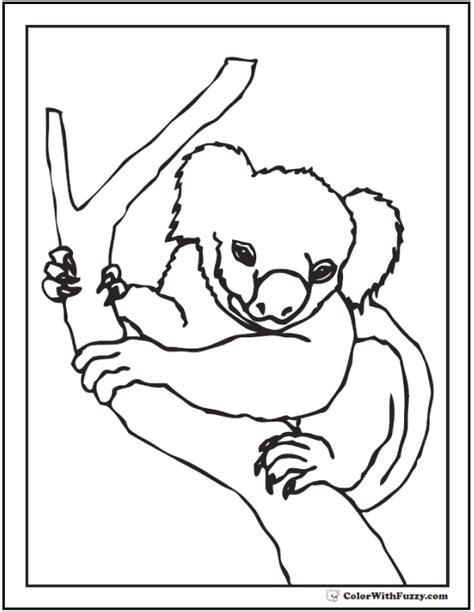 realistic koala coloring pages realistic koala bear coloring pages coloring pages ideas