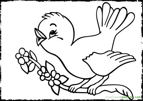 Kaos Print Umakuka Baby Lovebird baby bird flamingo coloring pages coloring pages