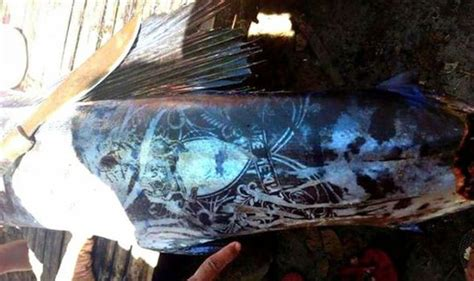 tattooed fish found off mindanao philippines alien